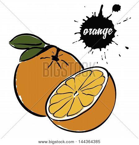 Isolated eco natural food fruit ripe orange