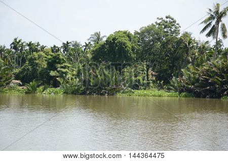 close up Bangprakong river in chachoengsao thailand