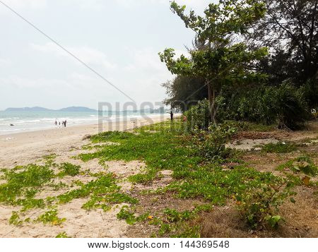 Mae Ramphueng beach in country Rayong Thailand