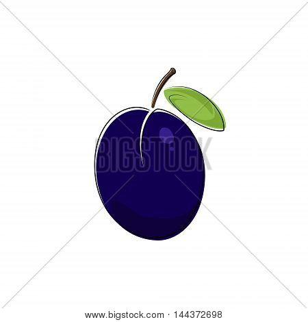 Purple Plum Isolated on White Background, Fruit Plum ,Vector Illustration