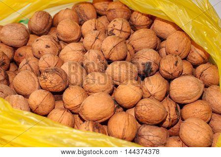 a plastic bag with a mature walnut