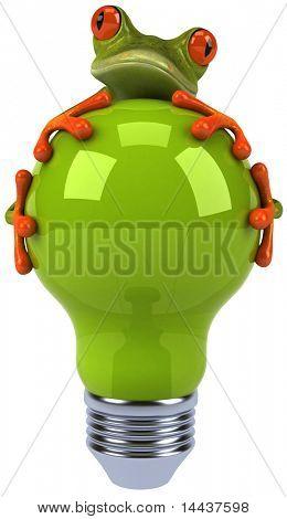 Frog and light bulb