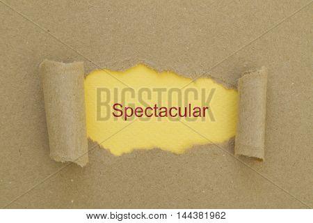 Spectacular word written under torn paper .