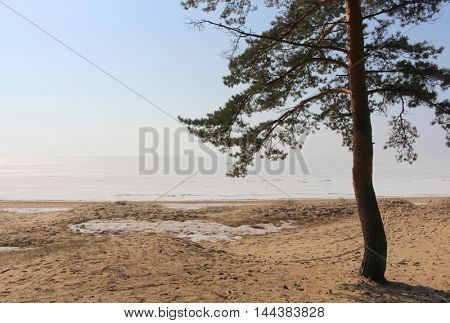 Snow of lake and sandy beach