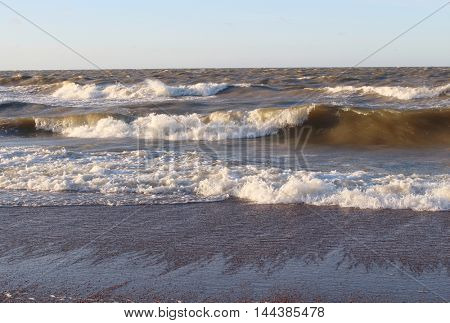 Large waves of the sea and the sandy beach