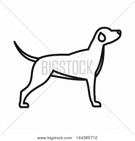 Hunting dog icon in outline style on a white background