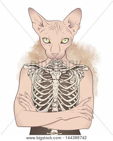 Anthropomorphic cat woman wearing t-shirt with print. Vector illustration