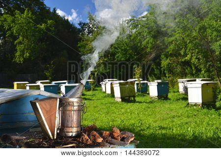 bee smoker in apiary in the summertime