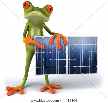 Frog and green energy
