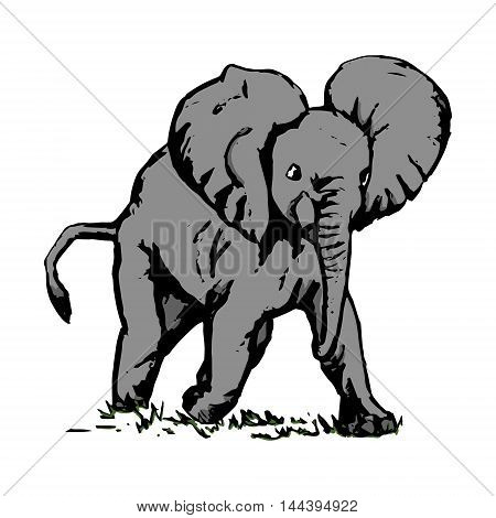 Grey elephant running in the green grass vector on white background