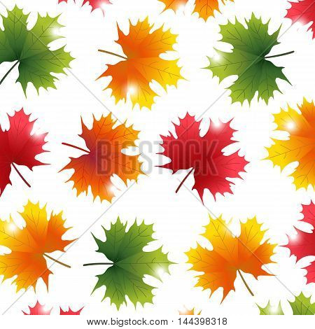 Autumn yellowed maple leaf on a white background wallpaper