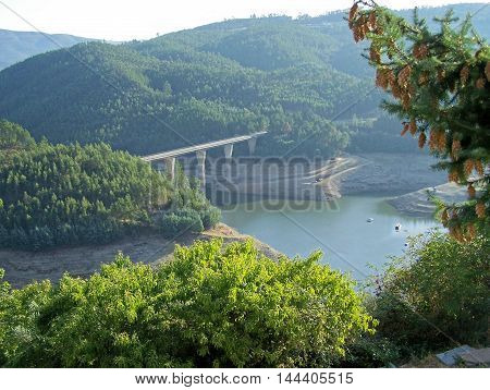 Beautiful detail of the riverside (Álvaro - Portugal)