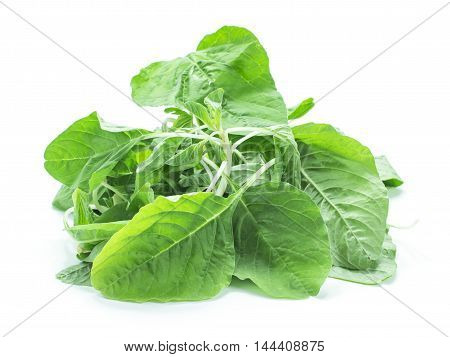 Spinach Fresh Ingredient Salad Cooking
