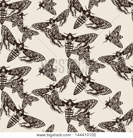 Illustration hand drawn Deaths head hawk moths seamless pattern. Wrapping paper of fabric design