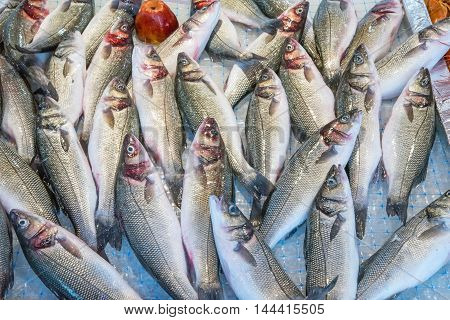 Fish for sale at a market in Palermo, Sicily
