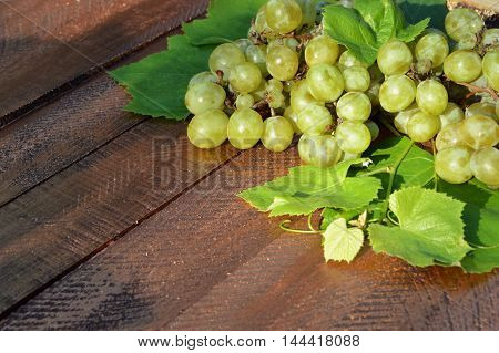 Bunch of yellow ripe grapes on wooden old background. Agriculture. Vintage.Ripe grapes in the rays of the sun.
