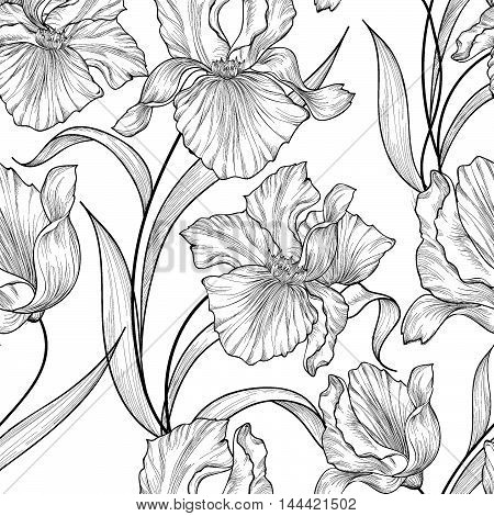 Floral seamless pattern. Flower iris swirl background. Floral  ornamental monohrome texture with flowers. Spring flourish garden engraving