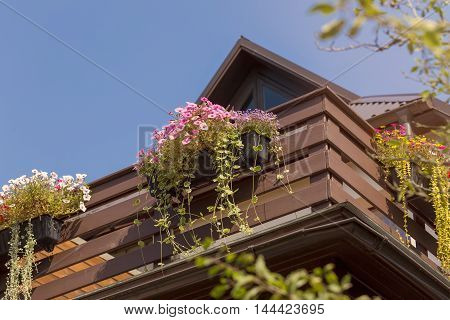 colorful flower boxes on wooden balcony rails