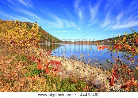 Autumn foliage along calm rocky lake shoreline.