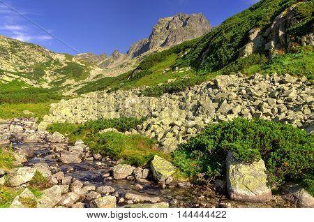 Summer mountain landscape. Mountain stream and rocky peaks in High Tatra Slovakia.