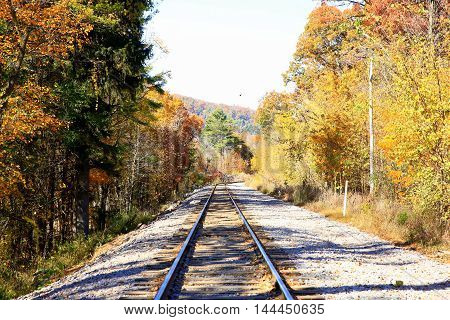 Railroad tracks surrounded by fall foliage wooded autumn colors