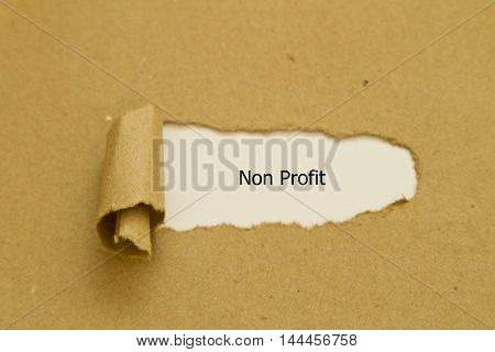Non Profit word written under torn paper.