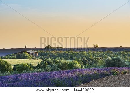 Provence landscape at sunset South of France