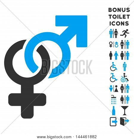 Heterosexual Symbol icon and bonus gentleman and woman toilet symbols. Vector illustration style is flat iconic bicolor symbols, blue and gray colors, white background.