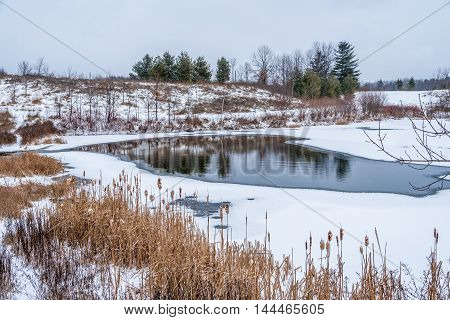 Picture of frozen lake in winter overcast day
