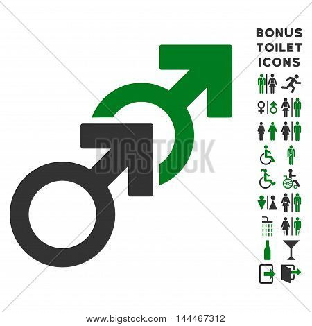 Gay Sex icon and bonus man and lady WC symbols. Vector illustration style is flat iconic bicolor symbols, green and gray colors, white background.