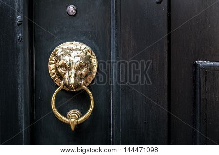 A metal Lion settled in a black door