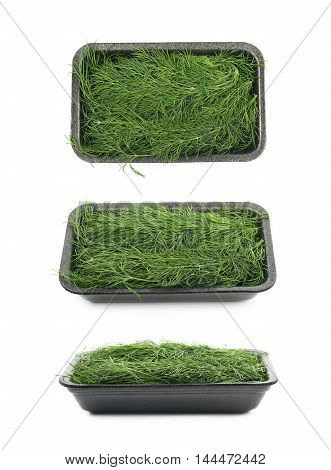 Plastic case filled with dill isolated over the white background, set of three different foreshortenings