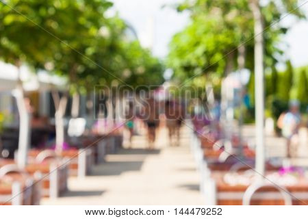 Defocused and blurred image. People walk in the park planted with ornamental trees in wooden square pots in a sunny day