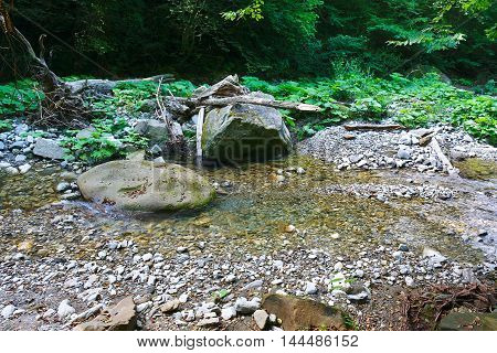 Marvellous mountain creek among the southern forests