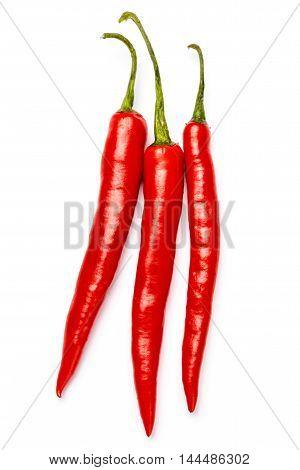 fresh chili pepper isolated on white background