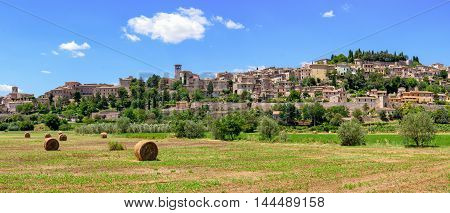 Spello (Umbria Italy) scenic view and landscape