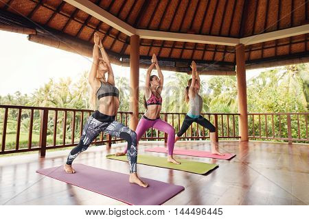 Young Women Doing The Warrior Pose In Fitness Class