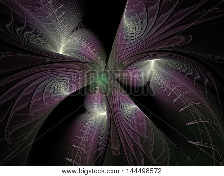 Abstract fractal pink plant computer generated on black background