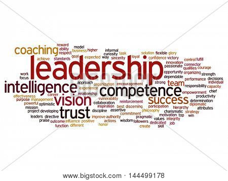 Concept or conceptual business leadership, management value word cloud isolated on background