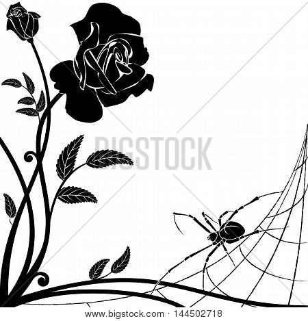 vector background with rose and spider in black and white