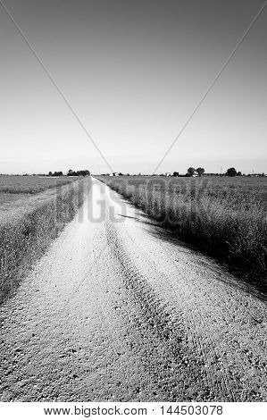 black and white of gravelled country road