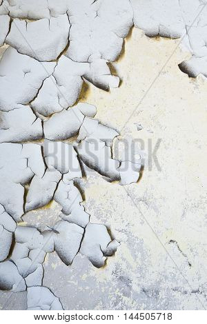 portrait view of old cracked flaky paint on a grungy cracked wall