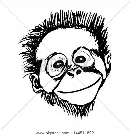 Graphic image of a monkey with a smile vector illustration on white background