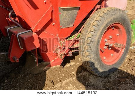 Seed potatoes are sown with Potato planter - Closeup