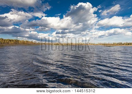 Lake landscape with waves in autumn and blue sky with clouds in windy day