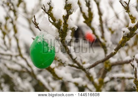 Colourful Easter eggs hanging from a tree in snow