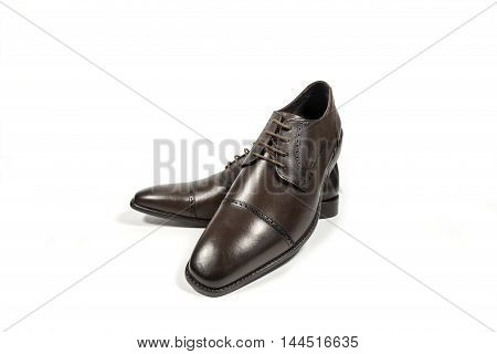 shoes men brown leather on white background.