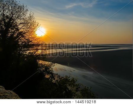 Trees silhouette and sunset in the Mont Saint-Michel bay, France