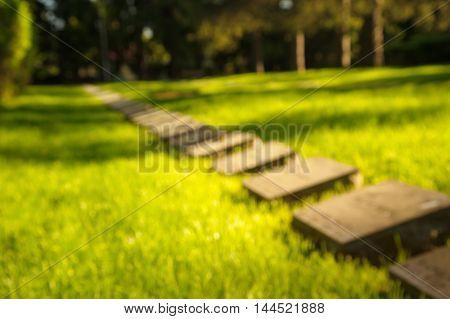 blur graves in green park on sunlight