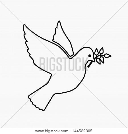 Dove Of Peace Flying With A Green Twig Olive